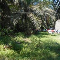 PT. BNI RRR Medan Lot 3.3, 1 bidang Tanah seluas 337 m2 yang terletak di Jl. H. Ismail Nasution, Desa Ujung Padang, Kec Ujung Padang