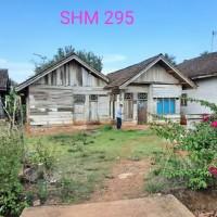 BRI Pringsewu 3a - Sebidang tanah pekarangan seluas 1.640 M2, SHM 295 di Desa Air Kubang, Kecamatan Pulau Panggung, Kabupaten Tanggamus