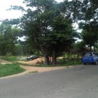 Kurator:1 bidang tanah dengan total luas 19.993 m2 SHM No.908/Ameroro di Kab. Konawe, Prov. Sultra.
