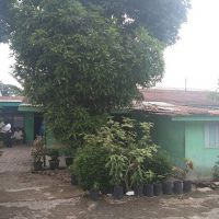BSM ACR Psiantar2 : 3 c. Tanah luas 198 M2 & bangunan (SHM No1072) di Desa Ujung Bandar Kec. Bilah Hulu Kabupaten Labuhanbatu