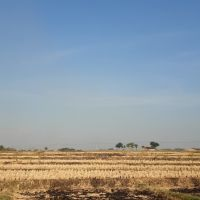 KPRI Sejahtera Magetan- 1.Tanah pertanian lt. 9040 m2 SHM No. 6, terletak di Desa Baluk, Kec. Karangrejo, Kab. Magetan,  Provinsi Jawa Timur
