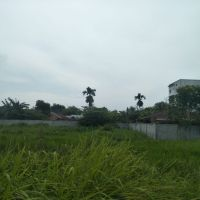 BPR Mitra Sumber Makmur -2. Sebidang tanah kosong luas 1.919 m2 di Jalan Pantai Labu Belakang, Kabupaten Deli Serdang