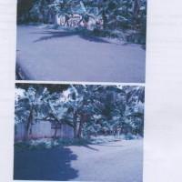 BRI Banjarnegara: Sebidang tanah, SHM No.99, luas ±908 m2, berikut segala sesuatu di atasnya, di Desa Pagelak, Madukara, Banjarnegara