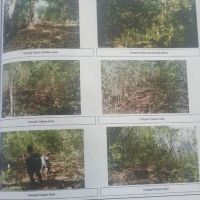 1. PN Mataram: Sebidang tanah luas 286 m2 sesuai SHM No.362/Ds. Kediri