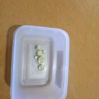 Cabjari Bakongan (1a) Emas seberat 20,54 (dua puluh koma lima puluh empat) gram (Kadar emas 50%)