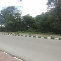 L. Eksekusi (PT Bank BNI Tbk., Kanwil Papua) : tanah luas 9.921 m2 (SHM 4135) di Mimika Baru, Kabupaten Mimika