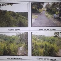 2 bidang tanah dengan total luas 21200 m2  SHM No. 522 dan SHM No. 913 di Kabupaten Klungkung (Bank MNC Internasional)