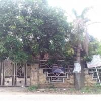 1 (satu) bidang tanah luas 210 m2 berikut bangunan terletak di Desa/Kel. Cibungur, Kecamatan Sukaresmi, Kabupaten Pandeglang BRI LABUAN