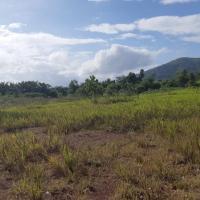 a.Kurator PT.FIG melelang 1 bidang tanah seluas 41,798 Ha, SHGB No.10, Desa Sungai Pinang, Kecamatan Tambang Ulang, Kabupaten Tanah Laut