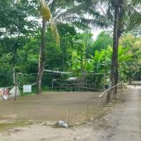 BPR Mataram Mitra Manunggal: Tanah, SHM no. 09649, luas 785 M2, di Desa/kel. Triharjo, Kec. Pandak, Kab. Bantul