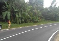 6.PT. BRI Cab. Tanjungpandan Sebidang Tanah Kosong Luas 2.581 m2 SHM No.00853/Sijuk