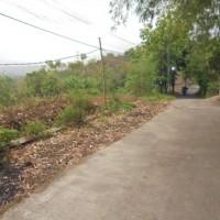 Harta Pailit: Tanah Kosong di Jl. Jangli Gabeng Kota Semarang