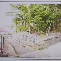 Harta Pailit:  Tanah kosong di Kelurahan Candi Kecamatan Candisari Kota Semarang