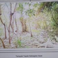 Harta Pailit: Tanah kosong di Jl Diponegoro No.38A Tegalsari, Candisari Kota Semarang