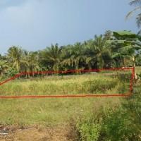 Lelang Eksekusi HT Bank Mandiri : Tanah seluas 1.543 M2 sesuai SHM No. 1050/Sei Rampah - Serdang Bedagai