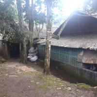 BRI Ciamis 4. T/B, LT 899 m2 di Blok Jetak, Ds.Sindangsari, Kec.Cikoneng, Kab.Ciamis