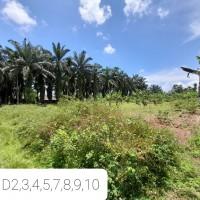 BTN Syariah, 53 bidang tanah total LT.6.553 m2 SHM Kel Pekan Bahorok, Kec.Bahorok, Kab.Langkat