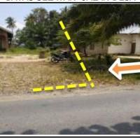 PT. PNM. Lot 4. Sebidang Tanah sesuai SHM No. 01195, Luas tanah 1.168 m², terletak di Kec. Beringin Jaya Kab. Luwu Timur