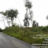 BRI Cab. Pangkalpinang : 04.b. Sebidang tanah, SHM No.1482 (13.530m2) di Jl. Raya Belilik Ds. Namang Kec. Namang Kab. Bangka Tengah