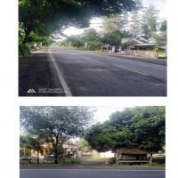 Kurator Santoso Setiono : Tanah dan Bangunan sesuai SHM Nomor 193 seluas 8.460 m²  di Ds Sumberejo, Kec. Banyuputih, Kab.Situbondo