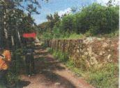 1 bidang tanah dengan total luas 1.535 m2 di Kota Bandar Lampung