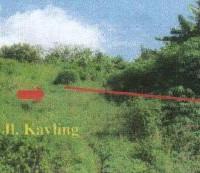 2 bidang tanah dengan total luas 1.167 m2 di Kota Bandar Lampung