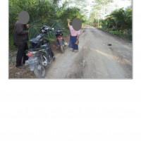 PT. PNM 4 : Sebidang Tanah Pertanian SHM No 1821 Luas 4.464 M2 Desa Tebas Sungai, Kecamatan Tebas, Kabupaten Sambas