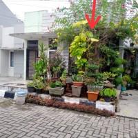 Bank Mestika Dharma-4b.Tanah Luas 90 m2 dan bangunannya di Komp. City Residence Blok B 28, Cinta Damai, Medan Helvetia, Kota Medan