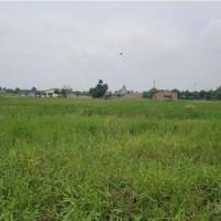 PT. BCA - 20 (duapuluh) bidang tanah kosong dalam 1 hamparan seluas total 1.600 m²