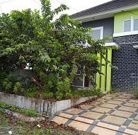 2.PT. Bank Mandiri RRCR Region II/Sumatera 2 Sebidang tanah dan bangunan sesuai SHM No. 2175 Luas Tanah 124 M2