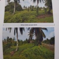 BPD Papua Cab. Serui 2a: Tanah seluas 5000m2 SHM 359 terletak di Jalan SP V(jalur 7) Kel.Kemon Jaya,Kec.Waropen Bawah, Kab Waropen