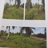 BPD Papua Cab. Serui 2b: Tanah seluas 2450m2 SHM 39 terletak di Jalan Inpres waren nonomi Kel.Nonomi,Kec.Waropen I, Kab Waropen