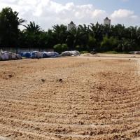 [BNI] - Sebidang tanah seluas 22.578m2 berikut bangunan yang berada di atasnya yang terletak di Kelurahan Tanjung Marulak d/h Desa Rantau La