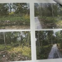 BPR Bank Kebumen: sebidang tanah SHM No. 965 luas 650 m2 di Desa Bejiruyung Kec. Sempor Kab. Kebumen