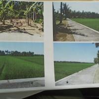 KSPPS Umat Sejahtera Mulia: sebidang tanah SHM No. 188 luas 573 m2 di Desa Pecarikan Kec. Prembun Kab. Kebumen