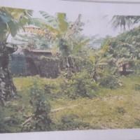 Lot 2 BPR SAU: Sebidang tanah berikut bangunan lt 1.125 m2 sesuai SHM No.943 di DsKota Dalam Kec Sidomulyo Kab Lampung Selatan