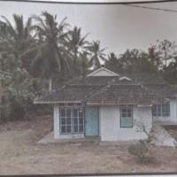 Lot 4 BPR SAU: Sebidang tanah berikut bangunan lt 1.486 m2 sesuai SHM No25 di Desa Budidaya Kec Sidomulyo KabvLampung Selatan lampung