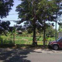 BRI Pacitan 1. Tanah SHM No.3477 seluas 1.251 m2 terletak di Jl Raya Pacitan Solo, Kel Sidoharjo, Kec/Kab Pacitan