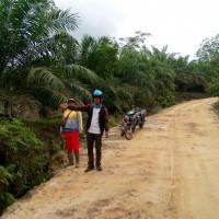 PT. PNM 2 : Sebidang Tanah Kosong SHM No 45 LT 19.904 M2 terletak di Desa Santaban, Kec. Sajingan Besar, Kab. Sambas