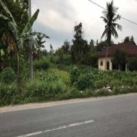 Harta Pailit- bidang tanah seluas 980 m2 terletak di Jl perniagaan, Kel. Stabat Baru, Kec. Stabat, Kab. Langkat