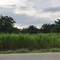 Harta Pailit-bidang tanah  seluas 6.106 m2, yang terletak di jalan musyawarah, Kelurahan Stabat Baru Kab. Langkat