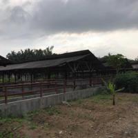 Harta Pailit-Tanah dan bangunan terletak di jalan musyawarah, Kelurahan Stabat Baru Kab. Langkat