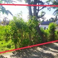 PT. BRI Kantor Fungsional Aceh-Tanah seluas 960 M2 sesuai SHM No. 329 An. Kusnadi Maimun.