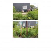 PKNSI - EKS PPA : Lot 1. 1 (satu) bidang tanah luas 202 m2 di Perum. Green Garden Blok C12 No. 1, Rorotan, Cilincing, Jakarta Utara