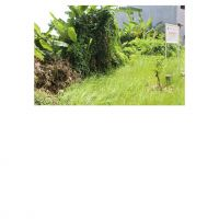 PKNSI - EKS PPA : Lot 8. 1 (satu) bidang tanah luas 77 m2 di Perum. Green Garden Blok C12 No. 9, Rorotan, Cilincing, Jakarta Utara
