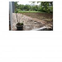 PKNSI - EKS PPA : Lot 10. 1 (satu) bidang tanah luas 121 m2 di Perum. Green Garden Blok C12 No. 11, Rorotan, Cilincing, Jakarta Utara