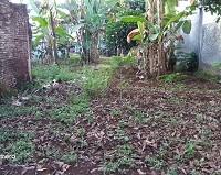 BRI Kendal: 1 (satu) bidang tanah SHM No 718 luas 458 M2, terletak di Desa Kutosari Kecamatan Gringsing, Kabupaten Batang