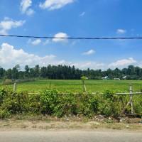 PT. BRI Kantor Fungsional Aceh-Tanah persawahan seluas 270 M2 sesuai SHM No. 506 An. Sulaiman.