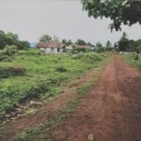 PT. Bank Mandiri: 1 (satu) bidang tanah seluas 1.235 m2 sesuai SHM No. M.642 di Kabupaten Merauke