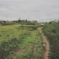 PT. Bank Mandiri: 1 (satu) bidang tanah seluas 2.000 m2 sesuai SHM No. M.595 di Kabupaten Merauke